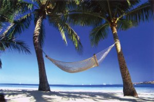 Grab a beverage and a snack and kick back in the hammock.