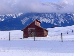 Little red barn in snow.