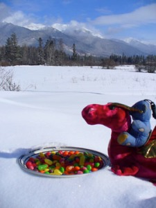 Douglas the Red Sparkly Dragon Visits Montana.