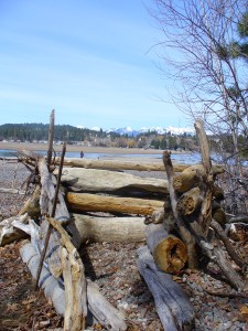 Drift wood fort with Mountains.