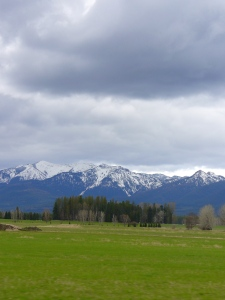 Green Spring meets Mountains.