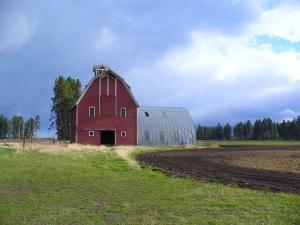 Abandon Farm for Sale.